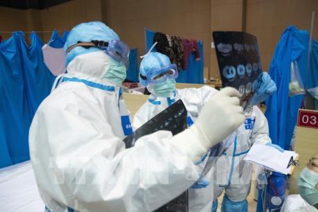 IMF và WB sẵn sàng cung cấp khoản hỗ trợ khẩn ngăn chặn dịch COVID-19