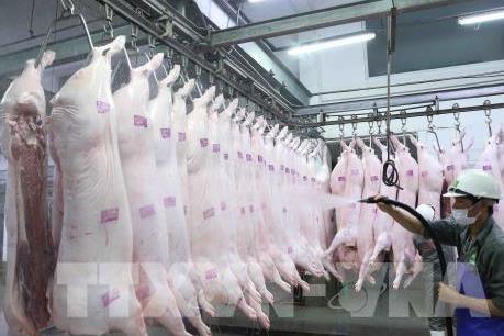 Giá lợn hơi, thịt lợn trên thị trường vẫn ở mức cao