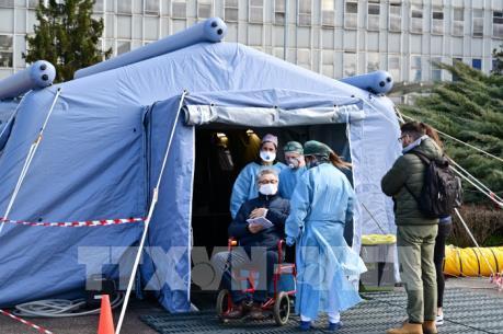 Italy điều tra những kẻ lợi dụng dịch COVID-19 để lừa đảo