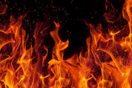 Tp Hồ Chí Minh: Cháy lớn tại công ty gỗ nằm trong khu công nghiệp