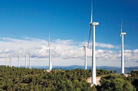 Các dự án điện gió phải thực hiện theo Quy hoạch phát triển điện lực
