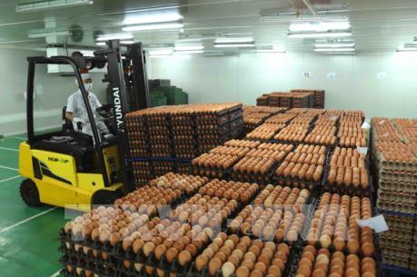 Bộ Công Thương chỉ thị phòng, chống dịch và gỡ khó cho sản xuất