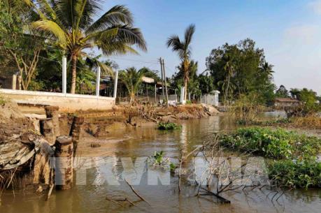 Công bố tình trạng khẩn cấp sạt lở đê bao khu dân cư huyện Trà Cú, Trà Vinh