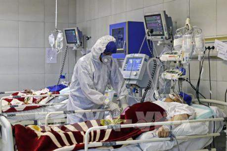 Dịch COVID-19: Iran đã có tổng số 429 ca tử vong