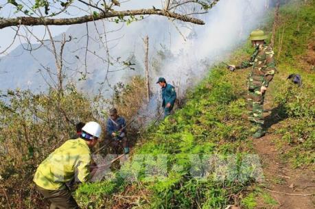 Lào Cai khống chế nhanh nhiều điểm cháy giáp ranh rừng