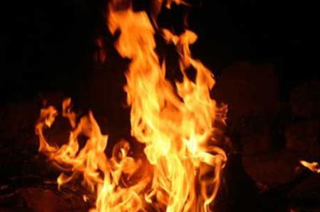 Cháy lớn tại xưởng ươm cây giống hiện đại nhất Đà Lạt