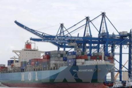 Tàu biển bị ảnh hưởng bởi dịch COVID-19 có thể được hoãn đăng kiểm