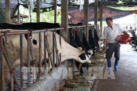 Đưa bảo hiểm nông nghiệp đến gần người dân