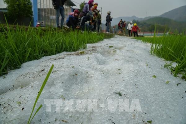 Dự báo thời tiết 27/7: Cảnh báo mưa rất to kèm lốc, sét, mưa đá