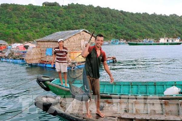 Phát triển bền vững nghề cá - Bài cuối: Quy hoạch chặt chẽ