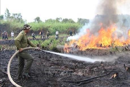 Hậu Giang nâng mức cảnh báo cháy rừng lên cấp V