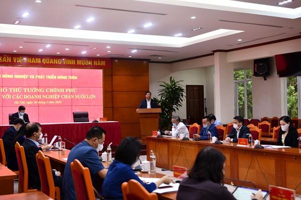 Phó Thủ tướng Trịnh Đình Dũng: Tăng mạnh đàn lợn nhưng không để mất cân đối cung cầu