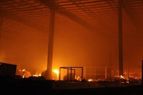 Cháy lớn trong Khu công nghiệp Nhơn Trạch 2, Đồng Nai