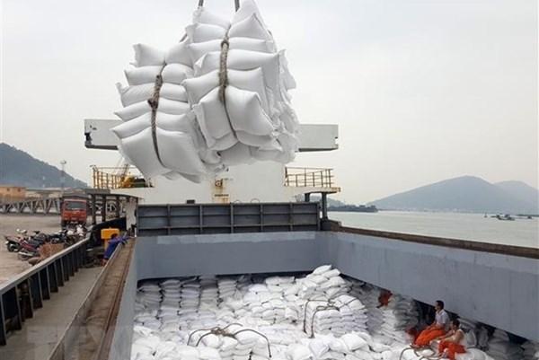Thanh tra Chính phủ chính thức vào cuộc thanh tra về quản lý xuất khẩu gạo