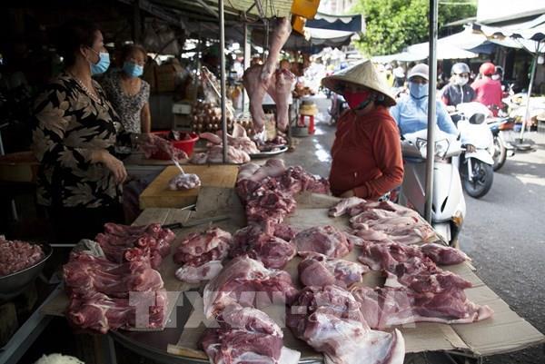 Giá lợn hơi ở Hà Nội tăng trở lại