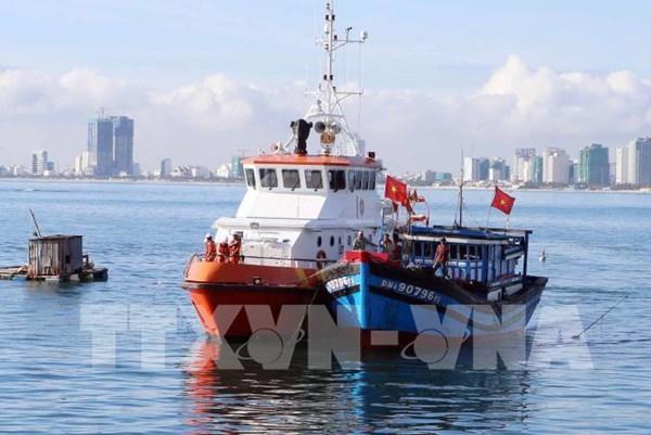 Dịch COVID-19: Cục Hàng hải Việt Nam thực hiện nhiều giải pháp hỗ trợ doanh nghiệp