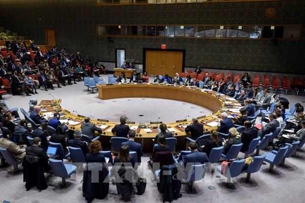 LHQ thông qua nghị quyết kêu gọi hợp tác quốc tế phòng, chống dịch COVID-19
