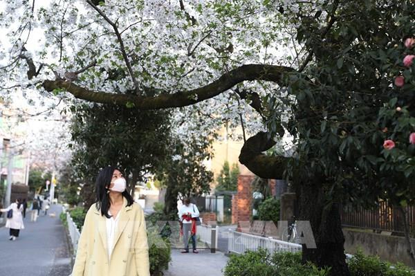 Dịch COVID-19: Tokyo (Nhật Bản) ghi nhận số ca nhiễm cao nhất trong một ngày