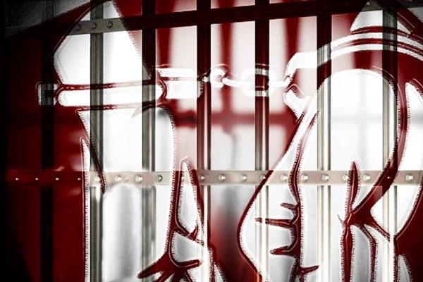 Bắt tạm giam Trưởng ban Thời sự Tạp chí điện tử Hòa nhập