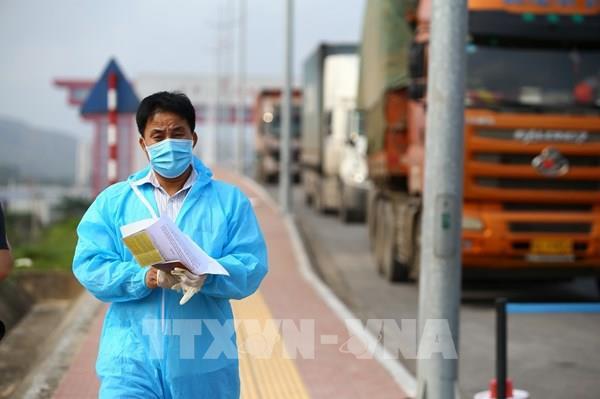 Thông quan hơn 9.600 tờ khai xuất nhập khẩu qua Cửa khẩu quốc tế Móng Cái