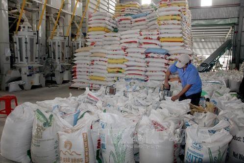 Bộ Công Thương lưu ý quy định của Indonesia về xuất nhập khẩu than đá, dầu cọ thô và gạo