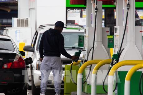 Giá dầu châu Á giảm xuống mức thấp nhất trong hơn hai thập kỷ