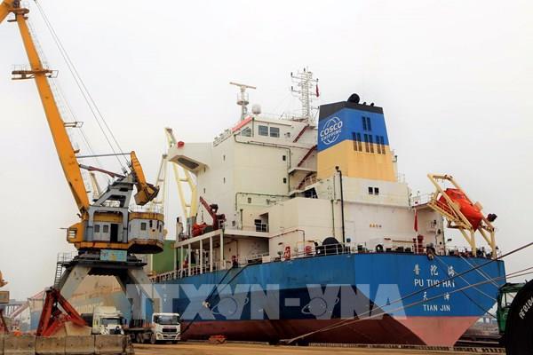 Cảng Hải Phòng đón 3 tàu kích thước lớn vào làm hàng
