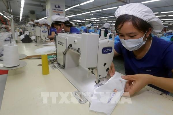 Quý I/2020, lợi nhuận sau thuế của TNG giảm 10%