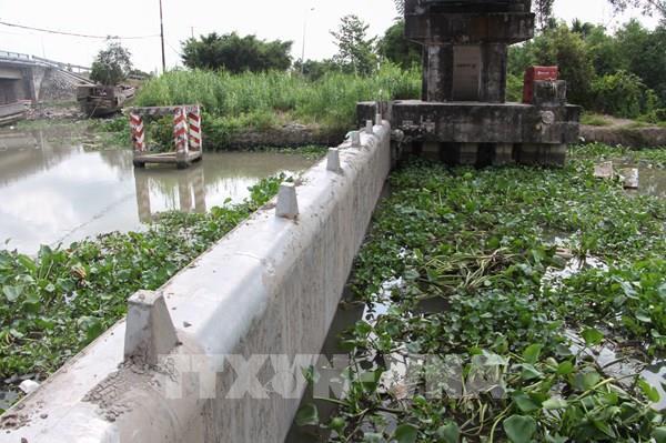 Xu thế xâm nhập mặn ở cửa sông Cửu Long liệu có giảm dần?