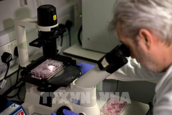 Anh thử nghiệm vaccine phòng COVID-19 trên người