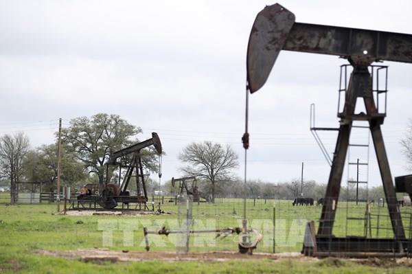 Giá dầu thế giới chứng kiến phiên giảm sâu nhất trong hai tháng