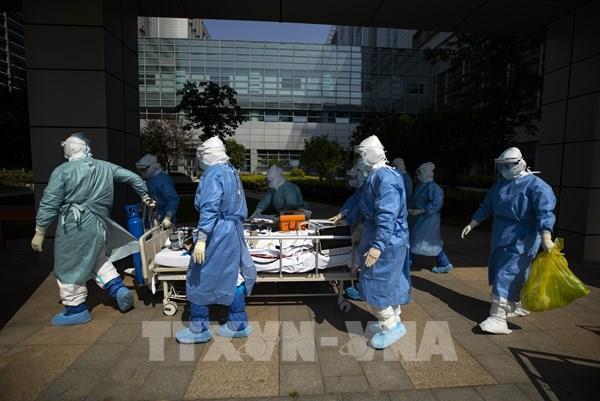 """WHO: """"Rất nhiều khả năng"""" virus SARS-CoV-2 xuất phát từ động vật"""