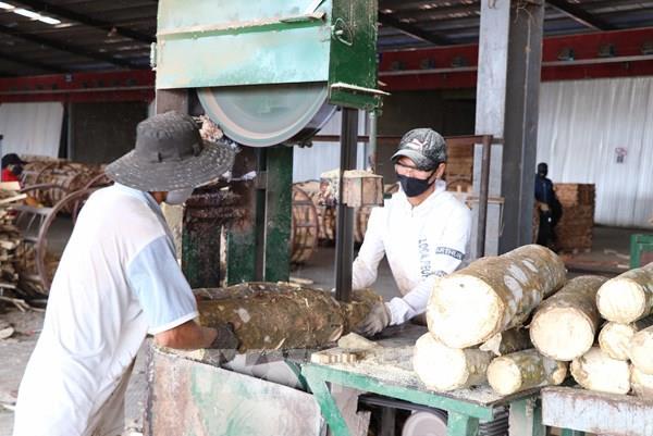 Gia Lai: Các khu công nghiệp, khu kinh tế cửa khẩu ứng phó linh hoạt với dịch