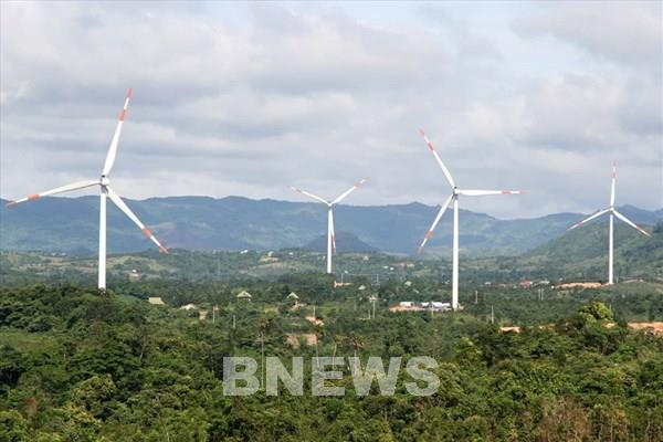 Trên 3.600 tỷ đồng xây dựng hai nhà máy điện gió quy mô lớn tại Gia Lai