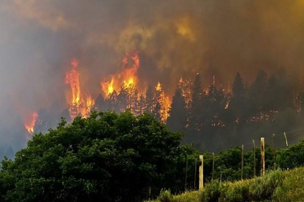 Hà Lan sơ tán hàng nghìn người do cháy rừng