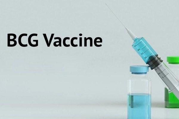 Ấn Độ sắp thử nghiệm vaccine phòng lao BCG để chống COVID-19