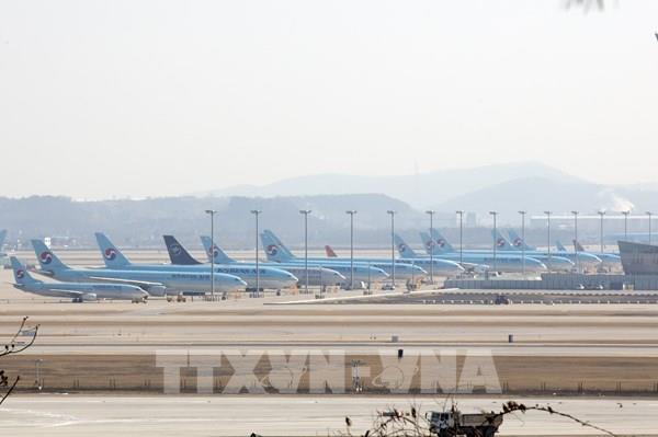 Hàn Quốc cân nhắc hỗ trợ bổ sung cho các hãng hàng không
