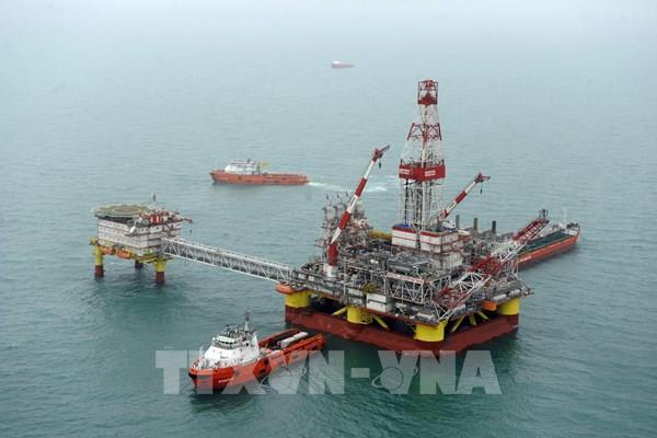 Giá dầu châu Á đảo chiều tăng trong phiên 2/7