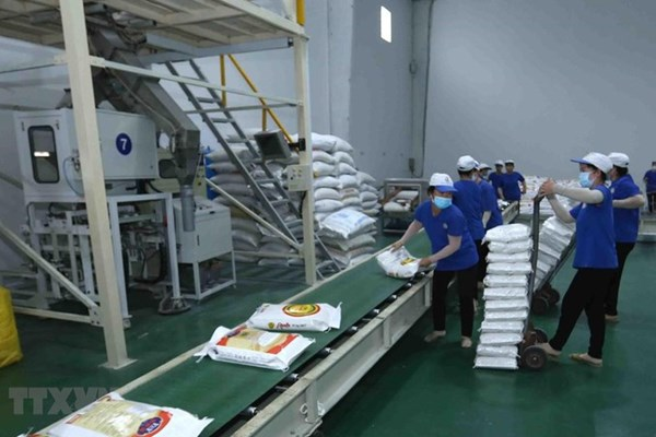 Truyền thông quốc tế đánh giá về cơ hội EVFTA mang lại cho Việt Nam