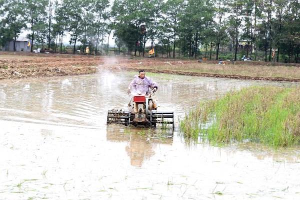 Nhiều diện tích canh tác có nguy cơ thiếu nước trong vụ Hè Thu, Mùa