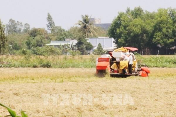 Năm 2030 nông nghiệp Việt Nam hướng tới mục tiêu vào tốp 15 nước phát triển nhất thế giới
