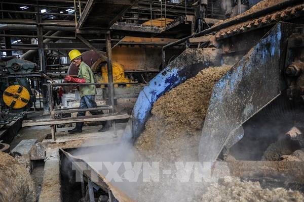 Mỹ gia hạn thêm 5 năm thỏa thuận mía đường với Mexico