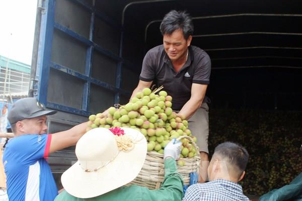 Quảng Ninh: Nhiều đơn vị thỏa thuận tiêu thụ vải Phương Nam