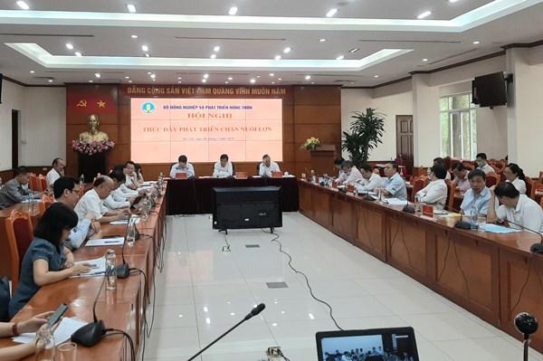 Bộ trưởng Nguyễn Xuân Cường: Tái đàn lợn nhanh nhưng phải cẩn trọng, an toàn