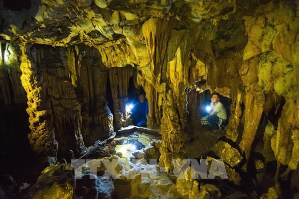 Khám phá vẻ đẹp di tích lịch sử động Trà Tu (Ninh Bình)