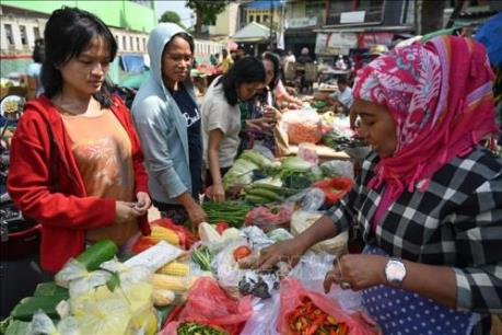 Đa dạng hóa: Giải pháp cho chuỗi cung ứng thực phẩm của Indonesia