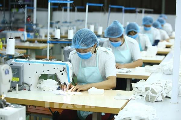 Tp Hồ Chí Minh: Nhu cầu nhân lực của các doanh nghiệp giảm mạnh