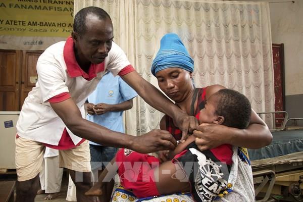 Madagascar khẳng định khả năng điều trị COVID-19 của dược liệu châu Phi