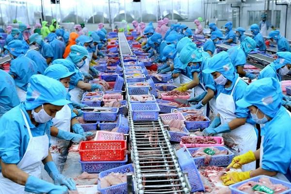 Tăng chế biến, xuất khẩu thủy sản sang thị trường bị ảnh hưởng dịch COVID-19