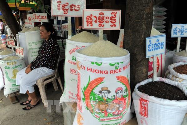 Campuchia sẽ tiếp tục xuất khẩu gạo vì an ninh lương thực thế giới